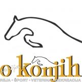 Revija  o konjih